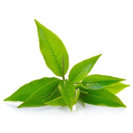 Ανθόνερο Πράσινο Τσάι