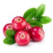 Κάψουλες Κράνμπερι (Cranberry) 70 τεμάχια 600mg
