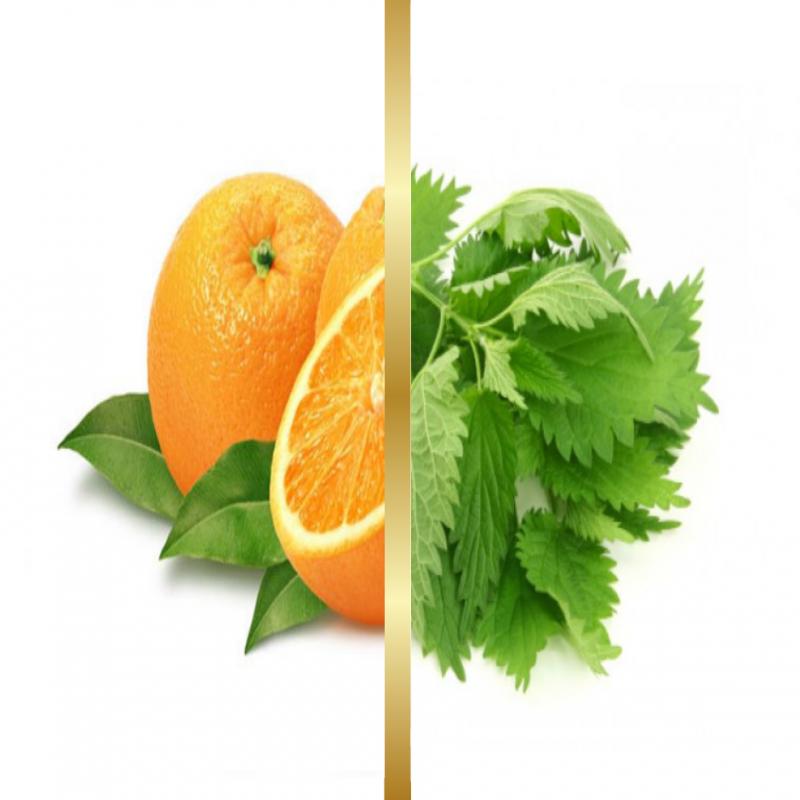Σαπούνι Ελαιόλαδου Πορτοκάλι & Τσουκνίδα