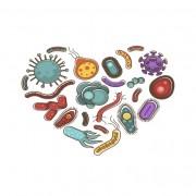 Μίγμα Βαμμάτων Ενάντια σε Μικροοργανισμούς & Παράσιτα 50ml