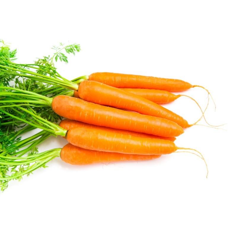 Αιθέριο Έλαιο Καρότο