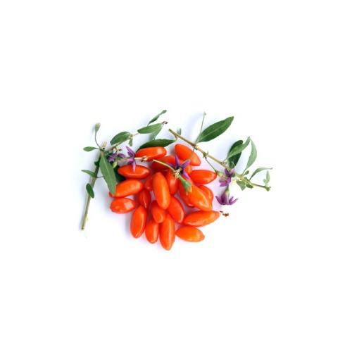 Κάψουλες Γκότζι Μπέρι (Goji Berry) 70 τεμάχια 600mg