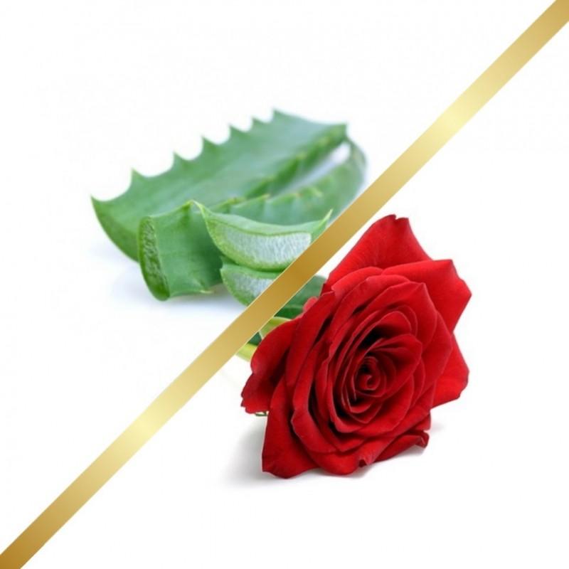 Aloe & Rose Water Mist