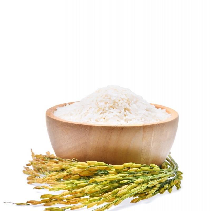 Φυτική Πρωτεϊνη Ρυζιού 80% ΒΙΟ