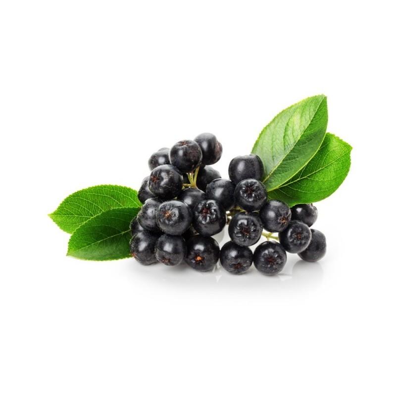 Κάψουλες Αρώνιας (Aronia Berries) 70 τεμάχια 600mg
