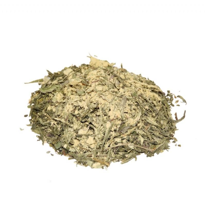 Πράσινο Τσάι Sencha με Τζίντζερ & Μέντα